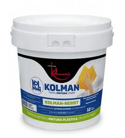 Pintura Plástica Mate Kolman Resist